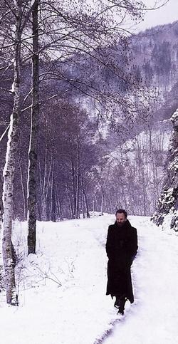Sting - winter - illu