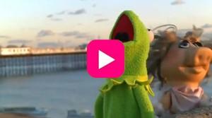 Kermit_Muppets_LCD_Soundsystem_play